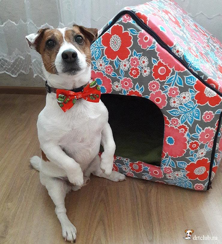 dbfecb56656b9c Voici le patron d une niche pour chien en tissu (ou chat) illustrée en  image et accompagné de tutoriel pour les réaliser. Parce qu on adore nos  petites ...