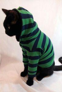coudre un Sweat à capuche pour chat !