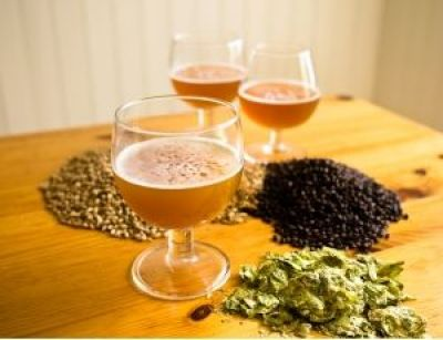 ingredientes-fazer-cerveja