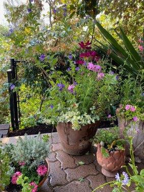 garden-curation-14