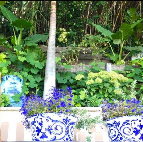 garden-curation-4
