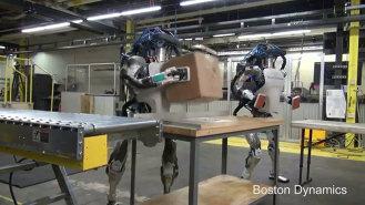 Boston Dynamics Atlas robots, showing how they'd work as stock clerks. Boston Dynamics, via Digital Trends, used w/o permission. (2017)