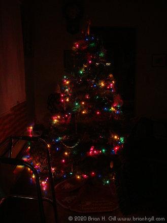 My home's Christmas tree, December 20, 2020.