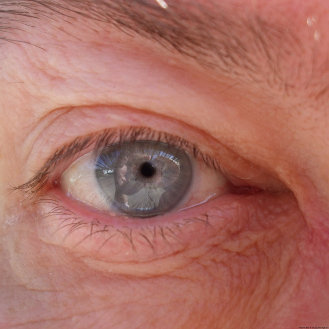 Brian H. Gill's right eye.;)