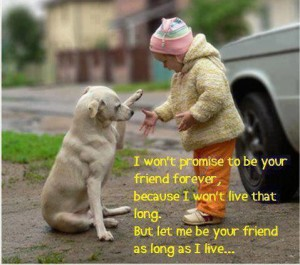 Promise Pic