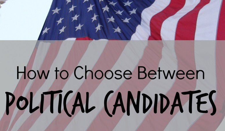 How to Choose Between Political Candidates