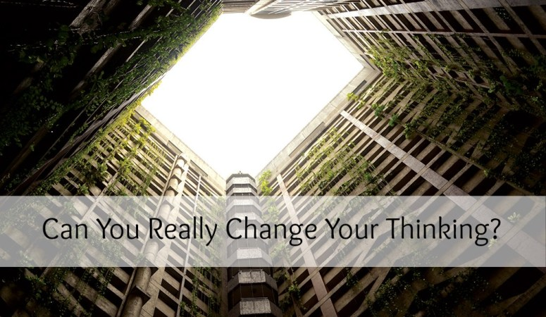 Can You Really Change Your Thinking?