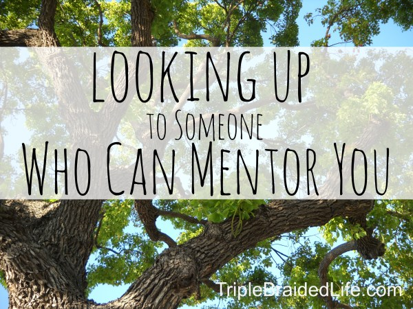 Looking Up to Someone Who Can Mentor You