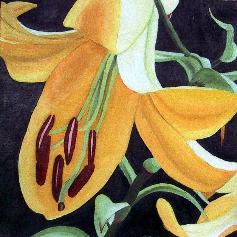 """Daylily"" Brenda Stonehouse 12"" x 12"" oil on canvas. Private collection."