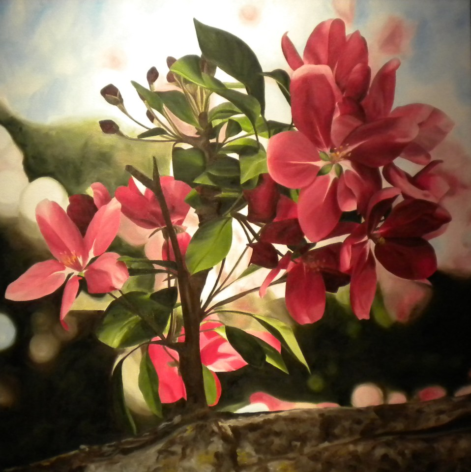 """Fragrant Spring"" Brenda Stonehouse 24"" x 24"" oil on canvas. Available for purchase."