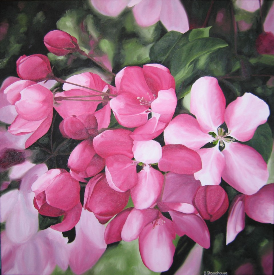 """In the Pink"" Brenda Stonehouse 24"" x 24"" oil on canvas. Available for purchase."