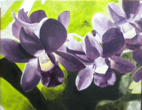 Orchids on March 14, 2012