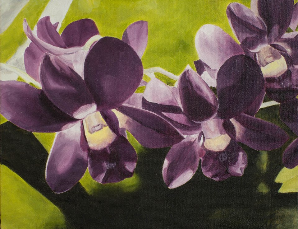 """""""Orchids"""" Brenda Stonehouse 8"""" x 10"""" oil on canvas. Private collection."""