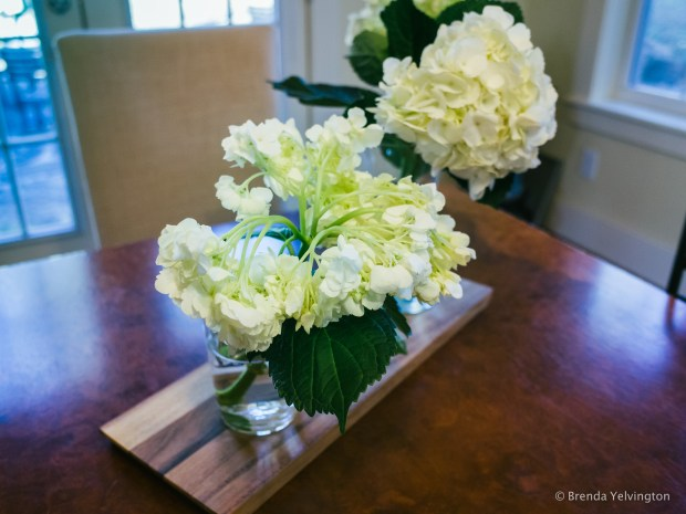 Grocery Store Flowers-0030537