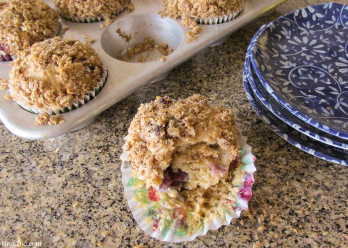 Healthy Snacks Best Blueberry Streusel Muffins Recipe from BrenDid-12