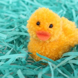 Simple Pom Pom Ducklings for Spring Fun