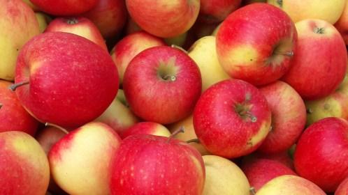 Apfel und Co.