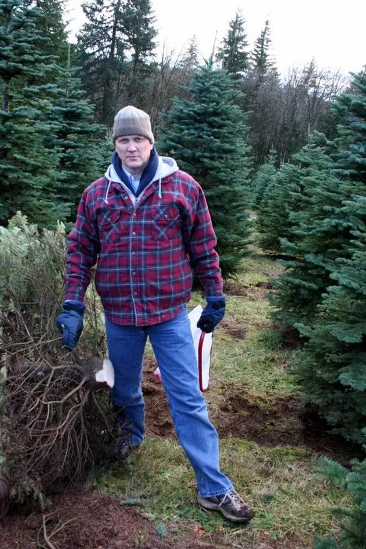Serious Business - Felling a Christmas tree is serious business. *<:-D