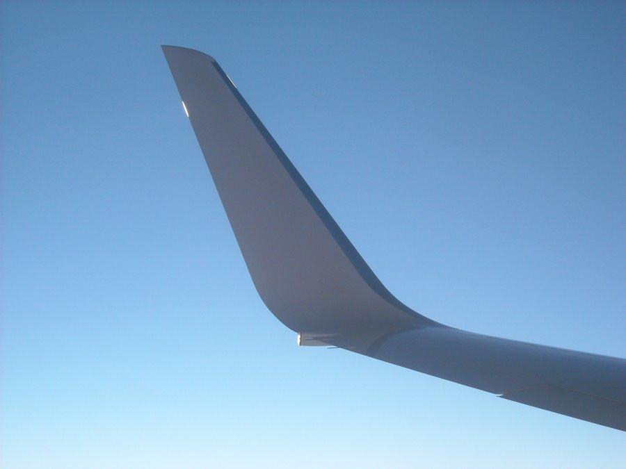 Winglet