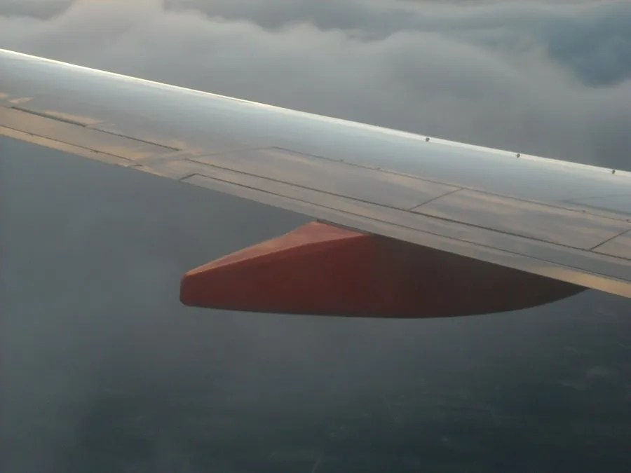 Wing Closeup