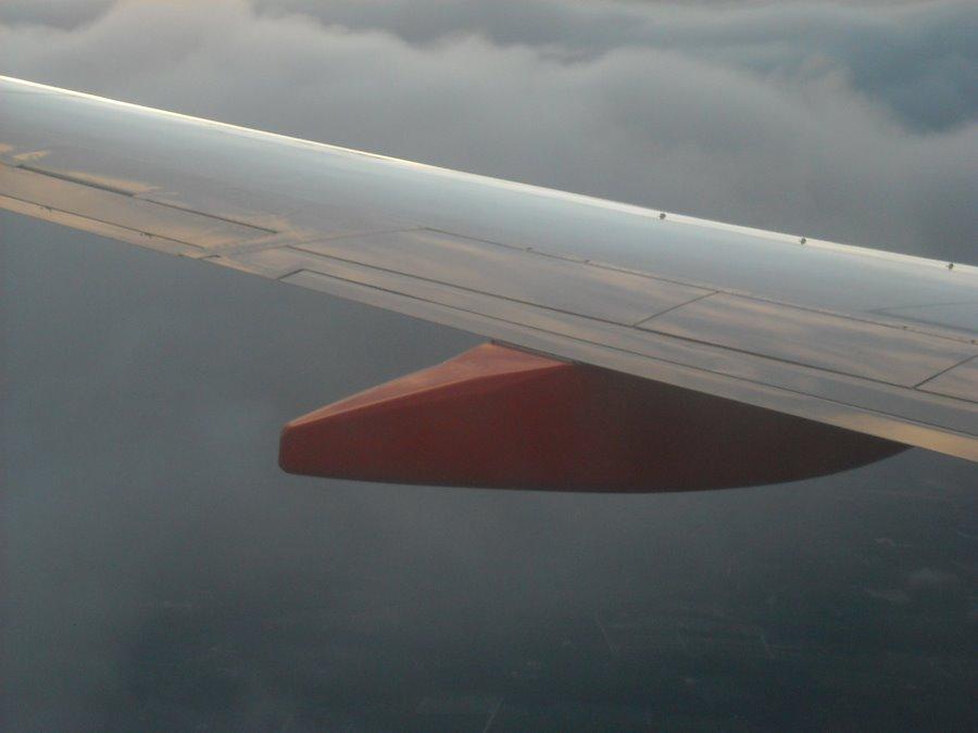 Wing Closeup