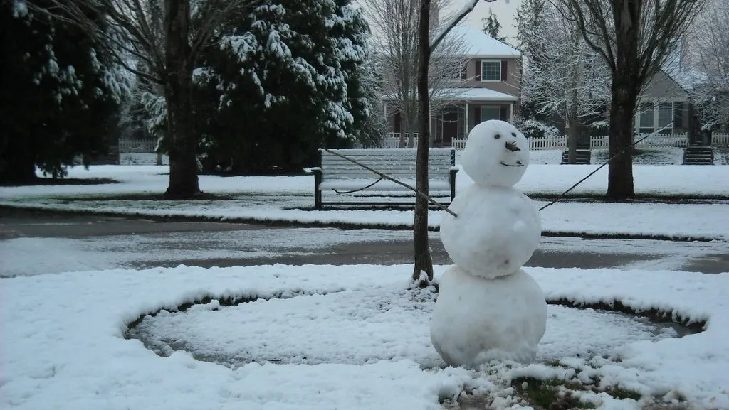 Someone's snowman