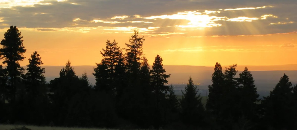 Dixie Sunset