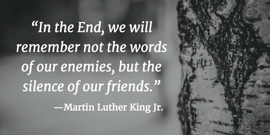 In the End, we will remember not the words of our enemies, but the silence of our friends. --Martin Luther King Jr.