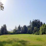 Grassy field across from Hillsboro airport