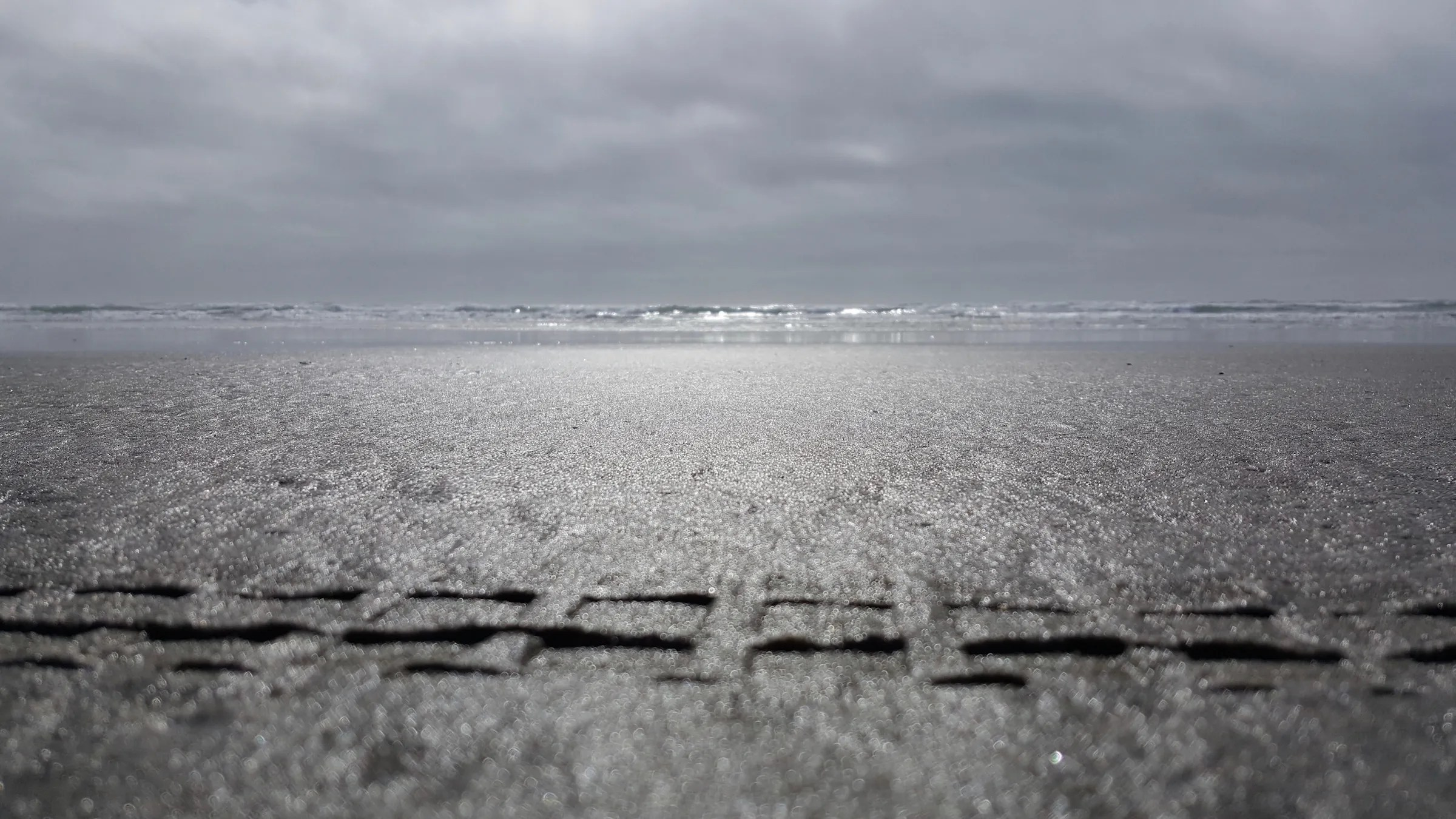 Minitrail tracks on the beach