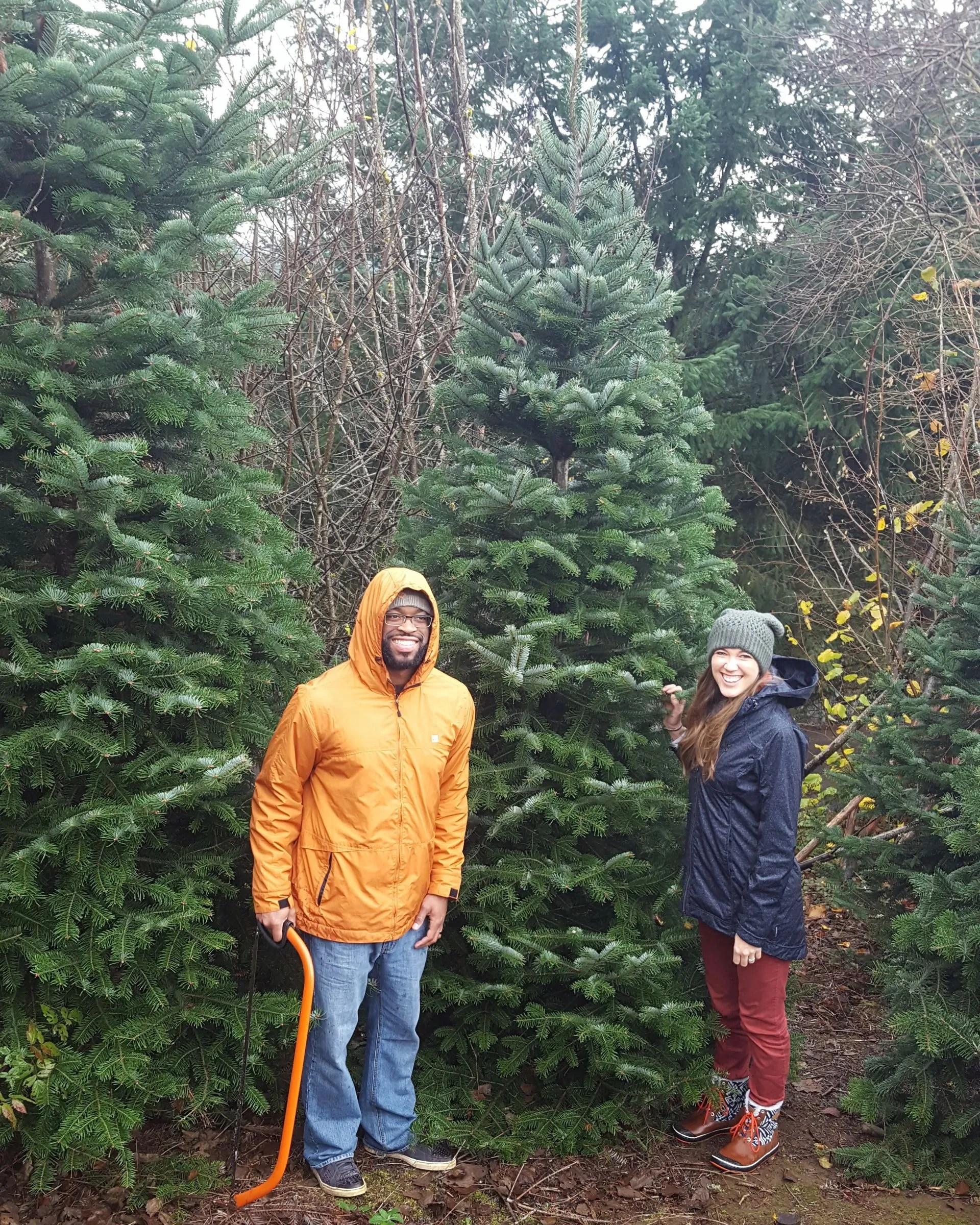 Kevin and Ashley found a tree
