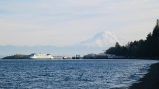 Mount Rainier from Point Defiance Park