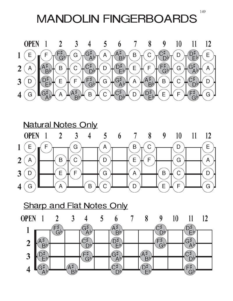 mandolin-blank-tablature-workbook-fingerboard-sharps-flats