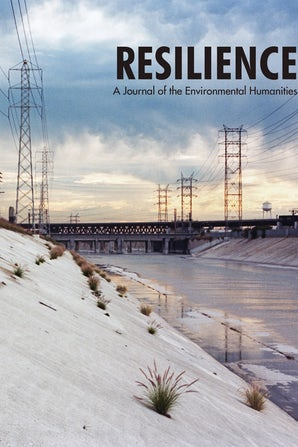 Cover of Resilience: A concrete aqueduct with powerlines and a cloudy sky.