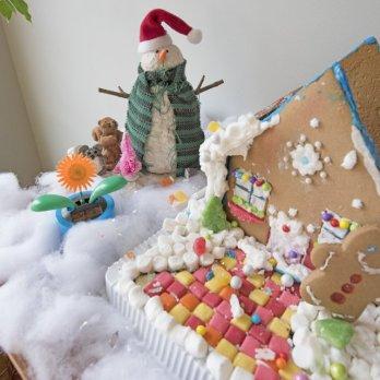 ginger-snow