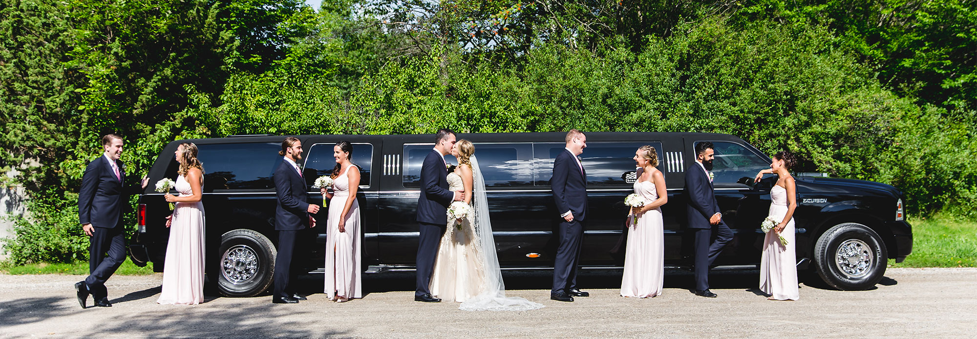 Wedding Party in front of a black limousine