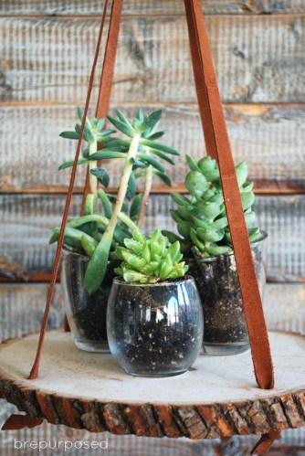 November DIY Challenge :: Hanging Wood Slice Plant Stand