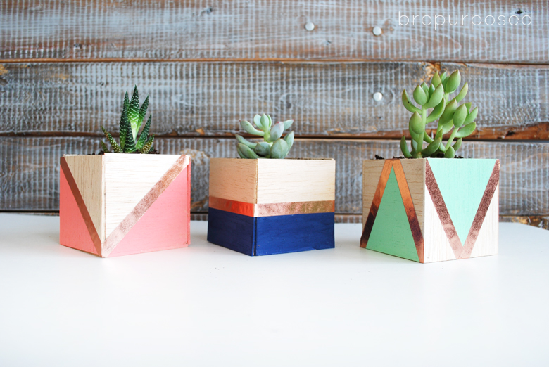 balsa wood planters with mini succulents