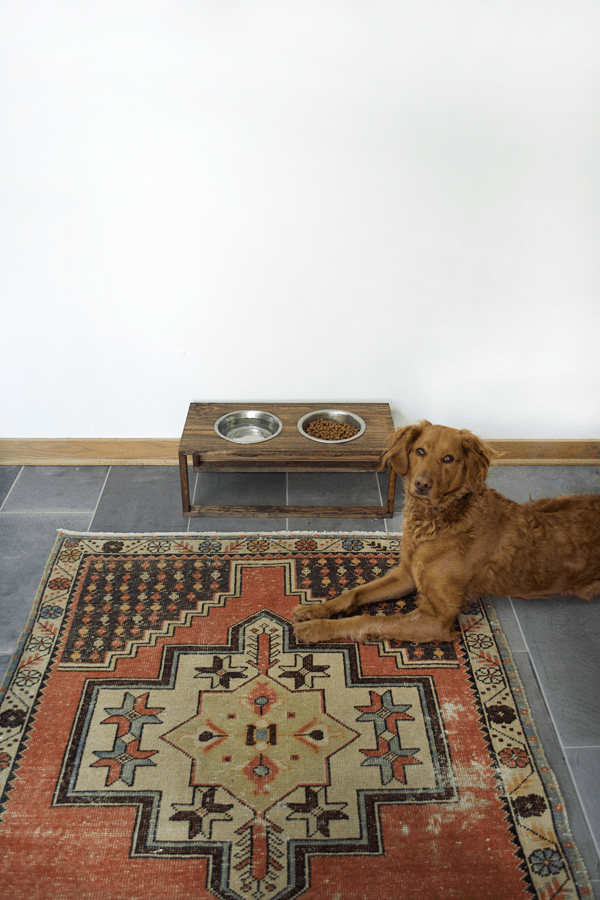 DIY Modern Dog Food Holder
