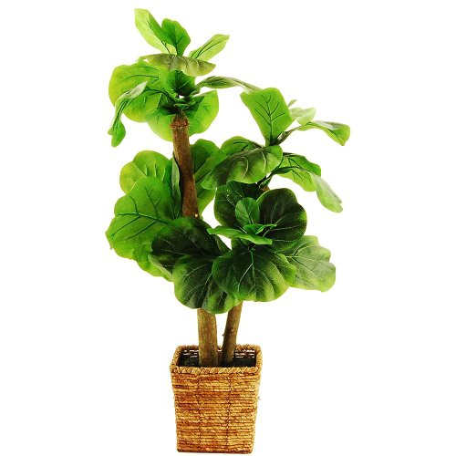 small faux fiddle leaf fig for under $100