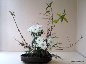 Ikebana @ Bretagne-Japon | Rennes | Bretagne | France