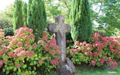 ブロセリアンドの森観光 – Brocéliande