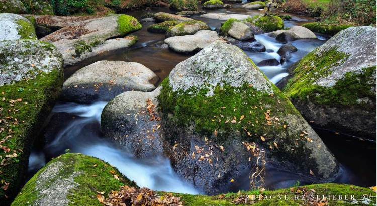 Ausflug ins Flusstal Gouet