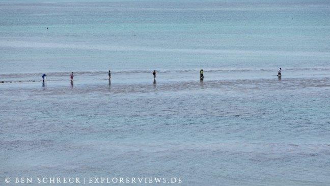 Pilgern auf die Insel Verdelet