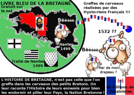 Breton_moutonnisé français 900x600
