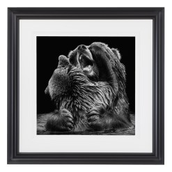 Wolf Ademeit Animal Black and White Fine Art Photography Portrait Zoo Animals Photographer Fine art photography for sale, Brett Gallery, art for home, corporate art, large format photography, Wildlife photography Bear