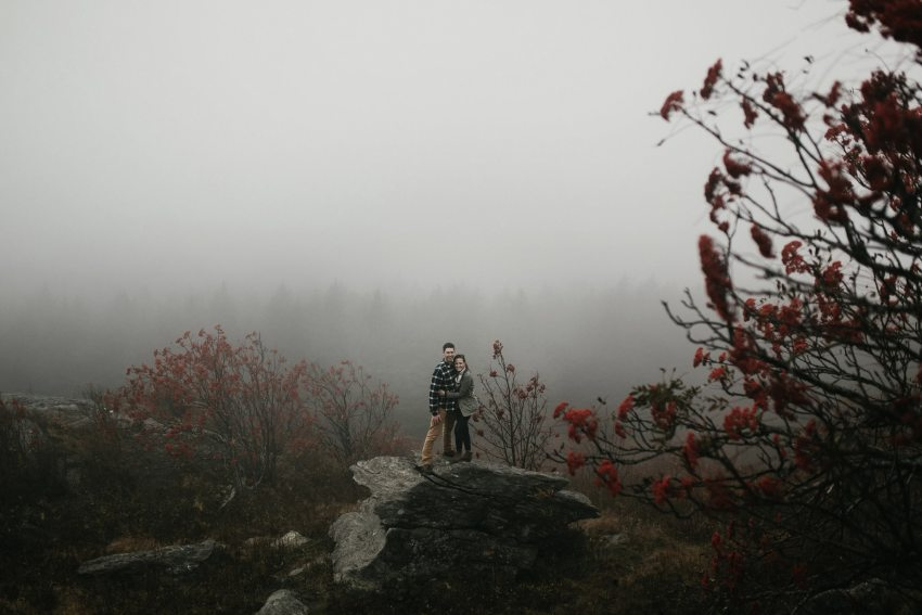foggy black balsam knob engagement
