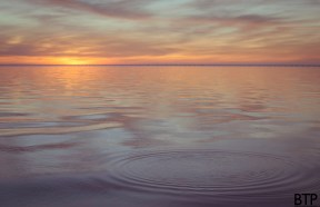 """I was zoomed in on the setting sun when my cousin yelled """"Fish!"""" and immediately I yelled """"RIPPLES!"""". True story."""
