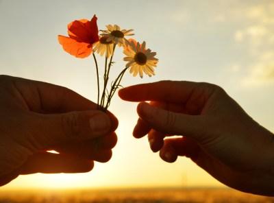flower, gift, kind, nice