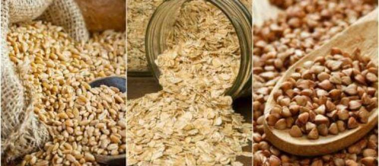 Different types of grains for turning into malt.